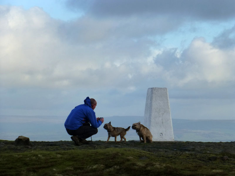 Dogs on Pendle